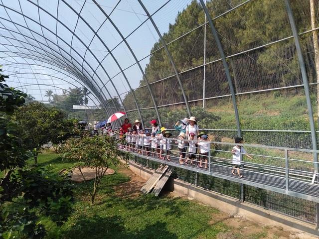 Khu du lịch sinh thái hoạt động trái phép vẫn đón khách tham quan tại Nghệ An - 15