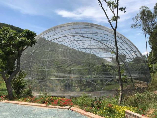 Khu du lịch sinh thái hoạt động trái phép vẫn đón khách tham quan tại Nghệ An - 5