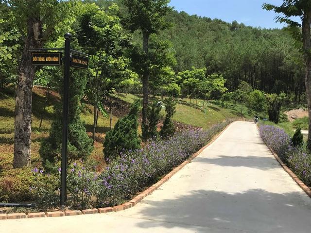 Khu du lịch sinh thái hoạt động trái phép vẫn đón khách tham quan tại Nghệ An - 4