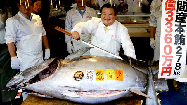 Vì sao cá ngừ vây xanh có giá lên tới hàng chục tỷ đồng?  - 1