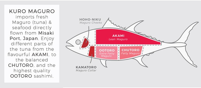 Vì sao cá ngừ vây xanh có giá lên tới hàng chục tỷ đồng?  - 5