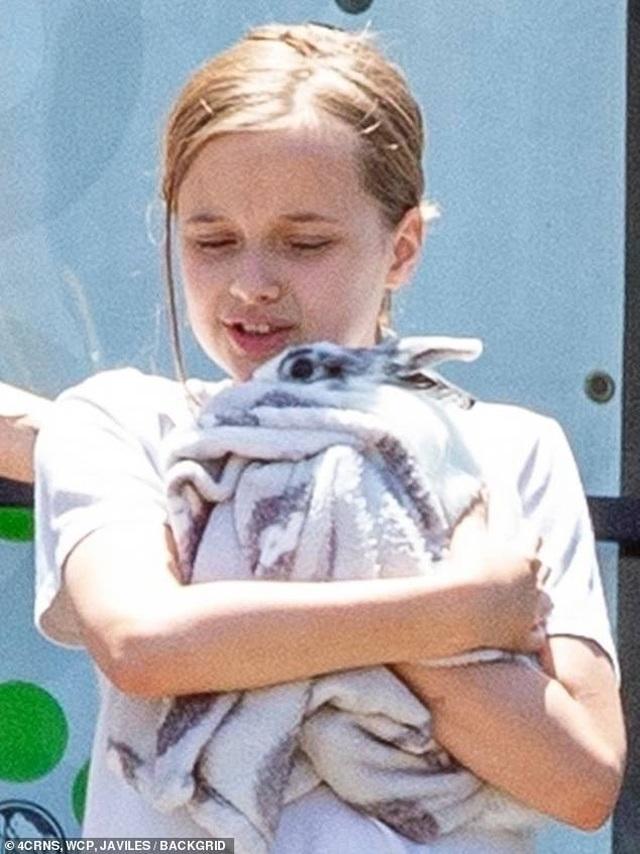 Angelina Jolie đưa con đi mua thỏ - 7