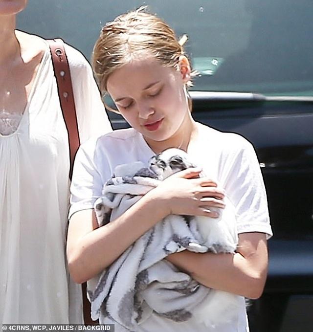 Angelina Jolie đưa con đi mua thỏ - 9