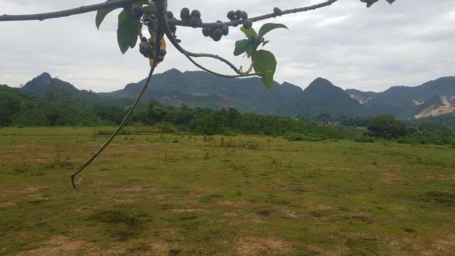 Chua chát dự án tái định cư tại Nghệ An: Dân thà chịu nguy hiểm còn hơn đến ở! - 6