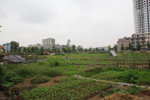 Hàng loạt hộ dân bị thu hồi đất kiến nghị được xem xét lại mức giá đền bù - 1