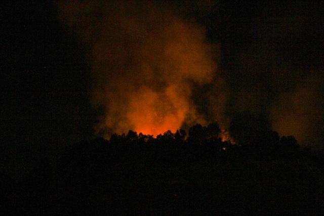 Đà Nẵng: Rừng cháy dữ dội, hàng trăm người dập lửa trong đêm - 1