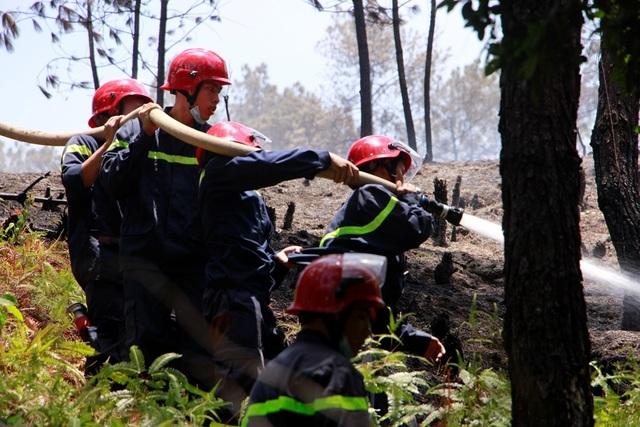 Rừng thông hàng chục năm tuổi bốc cháy dữ dội - 3