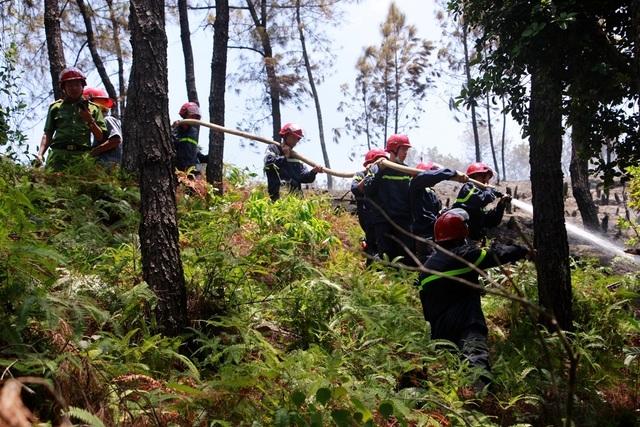 Rừng thông hàng chục năm tuổi bốc cháy dữ dội - 2