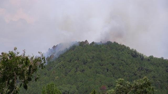 Rừng thông hàng chục năm tuổi bốc cháy dữ dội - 1