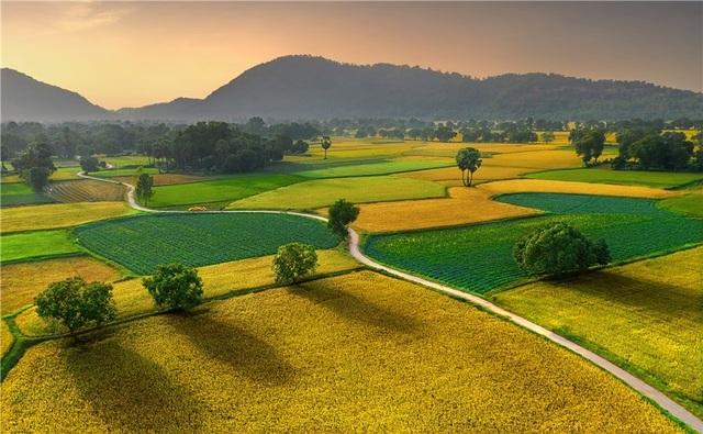 Nhìn bộ ảnh này, trái tim phải thốt lên Việt Nam ta đẹp quá! - 12