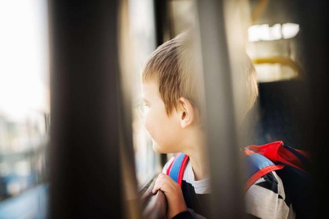 Di truyền là yếu tố lớn nhất trong nguy cơ tự kỷ - 1