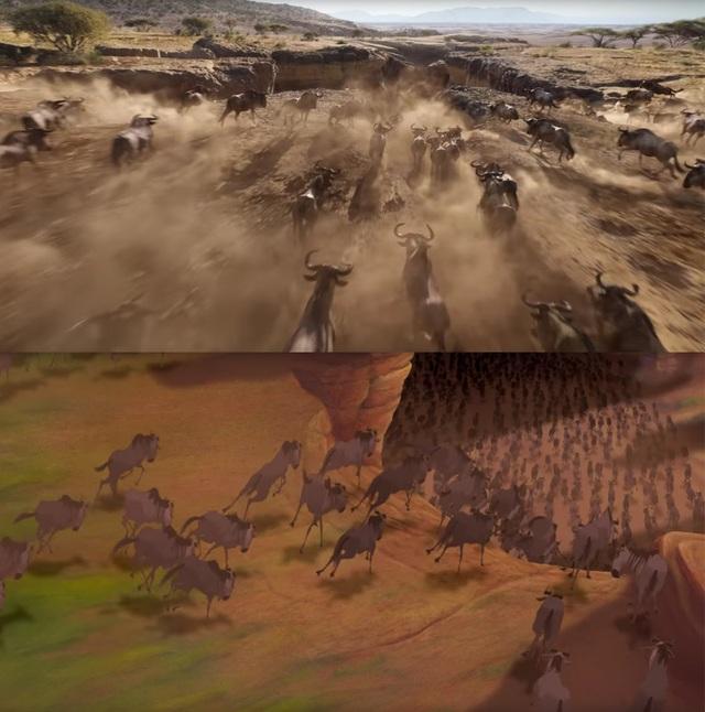 """18 khoảnh khắc đẹp không đổi thay của """"Vua sư tử"""" qua hai phiên bản - 9"""