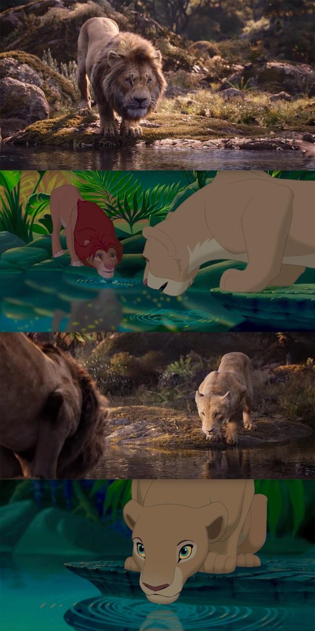 """18 khoảnh khắc đẹp không đổi thay của """"Vua sư tử"""" qua hai phiên bản - 15"""