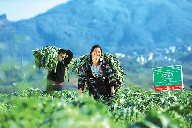 Vì sao thuốc Việt ngày càng được ưa chuộng? - 2