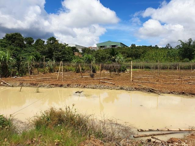 Vụ vỡ đập chứa nước thải tại Đắk Nông: Doanh nghiệp hứa bồi thường cho dân! - 1