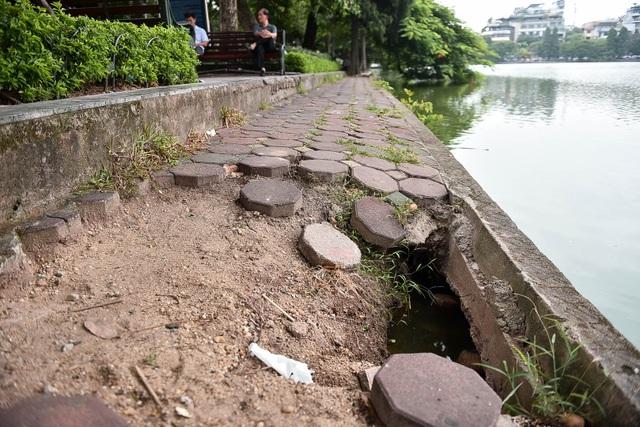 Bờ hồ Gươm nham nhở vì sạt lở kè - 11