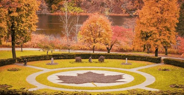 Mùa thu đẹp như tranh vẽ ở xứ sở lá phong - 2