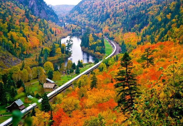 Mùa thu đẹp như tranh vẽ ở xứ sở lá phong - 4