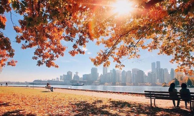 Mùa thu đẹp như tranh vẽ ở xứ sở lá phong - 5