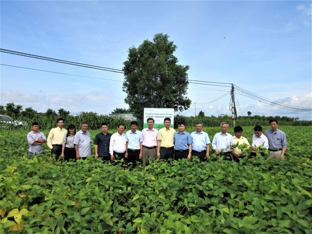 Vinasoy đạt bước tiến mới trong hành trình nghiên cứu và chọn tạo giống đậu nành - 1