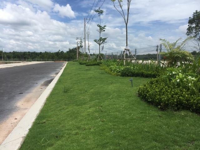 Đúng như tên gọi Phúc An Garden, dự án không chỉ là nhà mà còn có những khoảng sân vườn trải dài xanh mướt, mang đến không gian sống trong lành cho cư dân toàn đô thị.