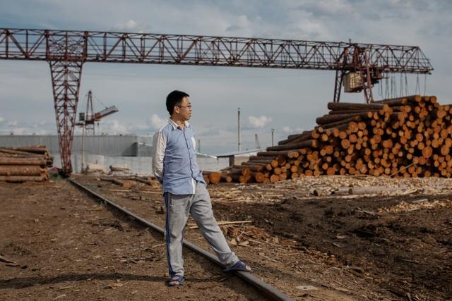 """""""Cơn khát"""" gỗ của Trung Quốc càn quét những cánh rừng ở Nga - 3"""
