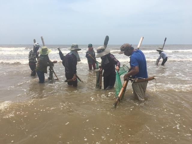 Nghề đi lùi cào ngao ở biển Quỳnh xứ Nghệ, kiếm 300 ngàn/ngày - 1