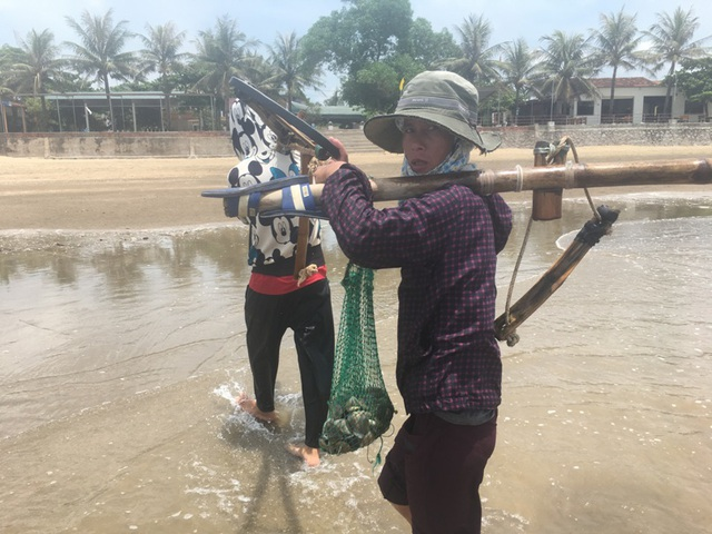Nghề đi lùi cào ngao ở biển Quỳnh xứ Nghệ, kiếm 300 ngàn/ngày - 4
