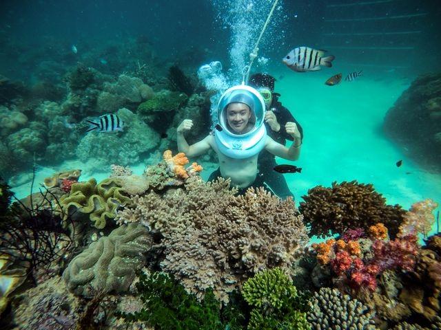 5 điểm ngắm san hô đẹp nhất Việt Nam, nhất định phải khám phá một lần trong đời - 1