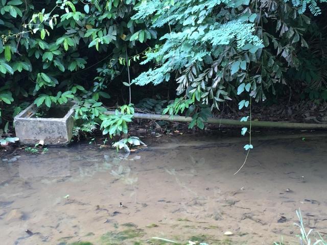 Nhiều công trình nước bị hư hỏng, người dân sắp chết khát giữa mùa khô! - 2