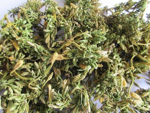 Loại hoa thường cắt bỏ đi sấy khô thành đặc sản 1,5 triệu đồng/kg - 2