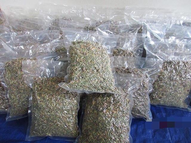 Loại hoa thường cắt bỏ đi sấy khô thành đặc sản 1,5 triệu đồng/kg - 3