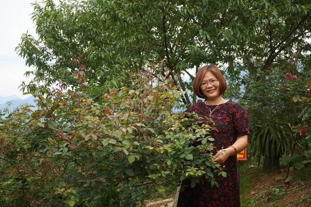 Bí quyết chăm sóc cây cảnh để vườn nhà luôn xanh mướt bất chấp nắng nóng - 1