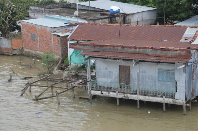 Sóc Trăng: Dân thấp thỏm lo sạt lở bờ sông ăn đường, nuốt nhà! - 7