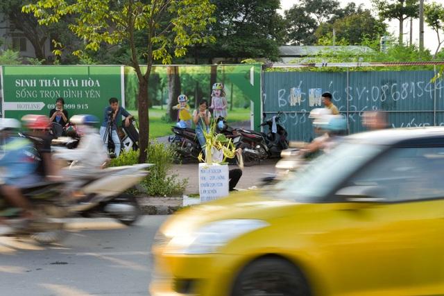 Hô biến lá dừa nước miền Tây thành giỏ hoa, con vật ở Hà Nội, kiếm tiền triệu mỗi ngày - 12