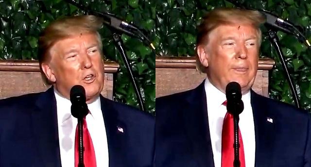 Video ruồi lởn vởn trên trán Tổng thống Trump gây sốt - 1