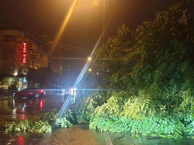 Tối muộn (2/8), bão số 3 đổ bộ vào Móng Cái, tâm bão ở phía Đông thành phố - 1