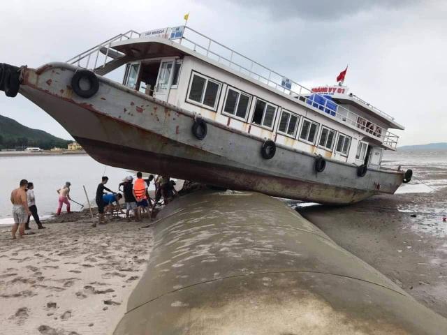 Trên đường tránh trú bão, tàu khách mắc kẹt trên đê bao dự án lấn biển - 1