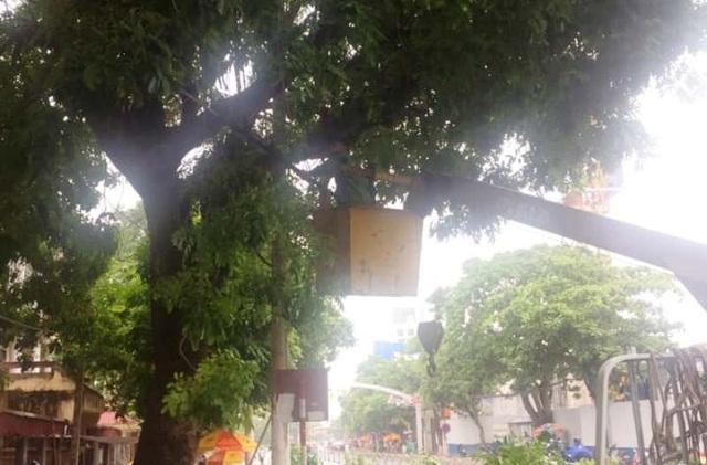 Di dời 14.208 hộ dân sinh sống ngoài đê chính trước giờ bão vào - 3
