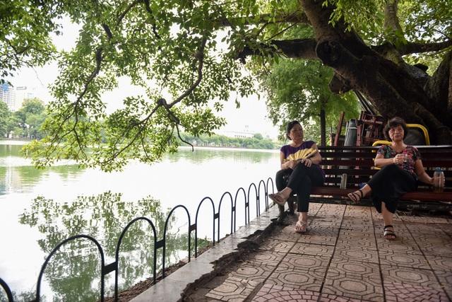 Bờ Hồ Gươm được dựng rào sắt, đặt biển cảnh báo sụt lún - 9
