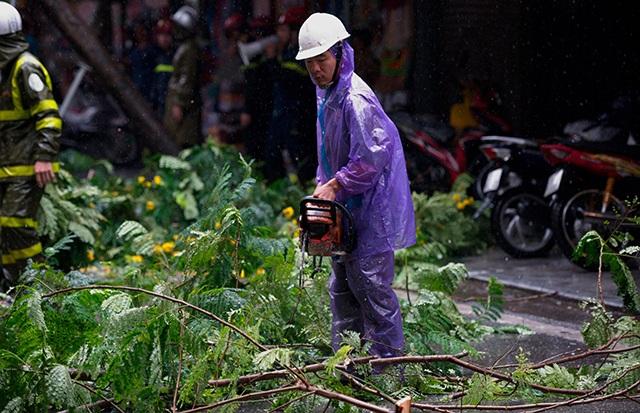 Hà Nội mưa liên tục sau bão, cây xanh gãy đổ ở nhiều nơi - 12