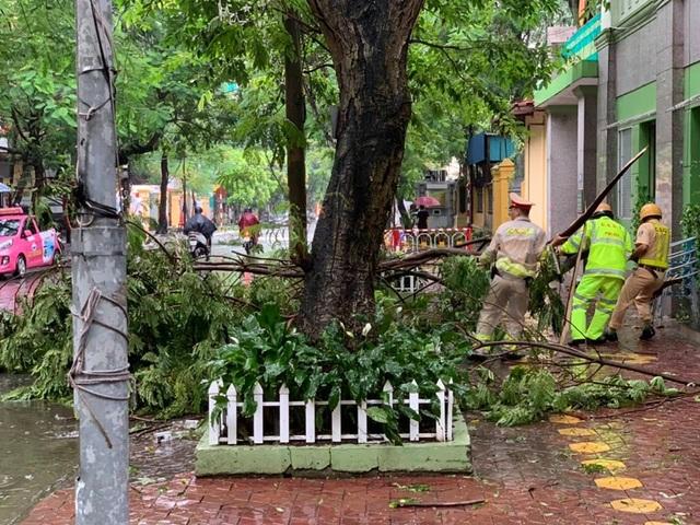 Hải Phòng:  Phố phường ngổn ngang sau bão số 3 - 13