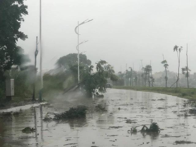 Quảng Ninh - Hải Phòng: Đường phố ngập sâu, cây xanh gãy đổ ngổn ngang sau bão số 3 - 12