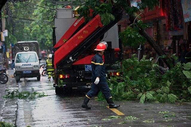 Hà Nội mưa liên tục sau bão, cây xanh gãy đổ ở nhiều nơi - 4