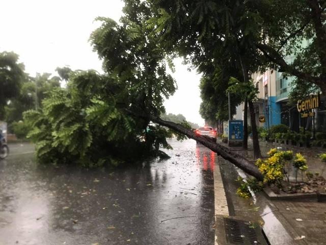 Hà Nội mưa liên tục sau bão, cây xanh gãy đổ ở nhiều nơi - 11