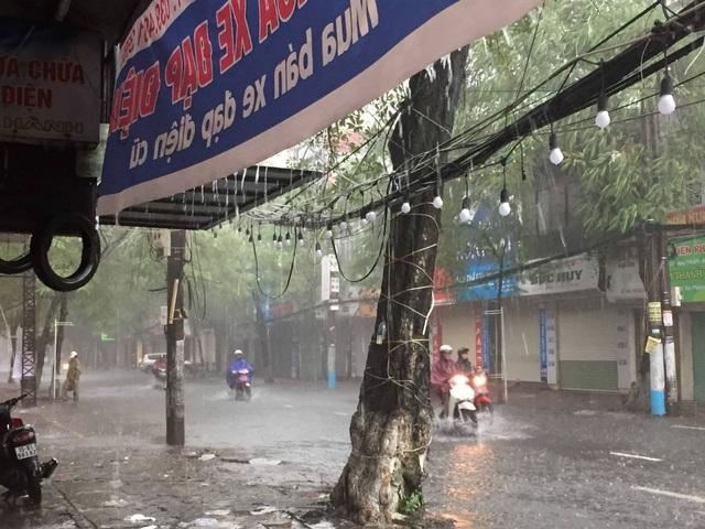 Quảng Ninh - Hải Phòng: Đường phố ngập sâu, cây xanh gãy đổ ngổn ngang sau bão số 3 - 3
