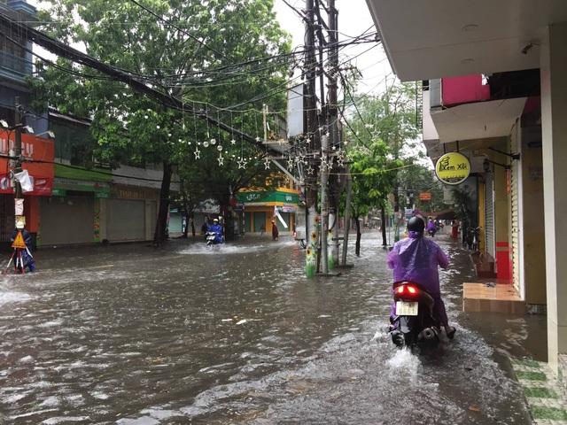 Quảng Ninh - Hải Phòng: Đường phố ngập sâu, cây xanh gãy đổ ngổn ngang sau bão số 3 - 2