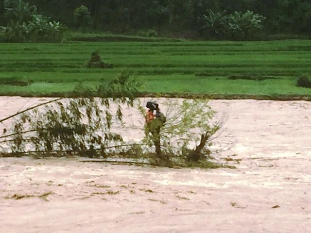 Giải cứu người đàn ông mắc kẹt trên ngọn cây, giữa dòng nước lũ - 1