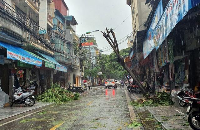Hà Nội mưa liên tục sau bão, cây xanh gãy đổ ở nhiều nơi - 6