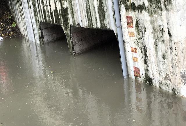 Khu thí nghiệm công nghệ Nhật làm sạch sông Tô Lịch lại chìm trong nước - 5